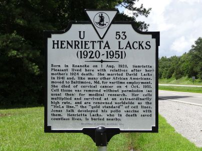 Historical highway marker dedicated in 2011 near Clover, Virginia.
